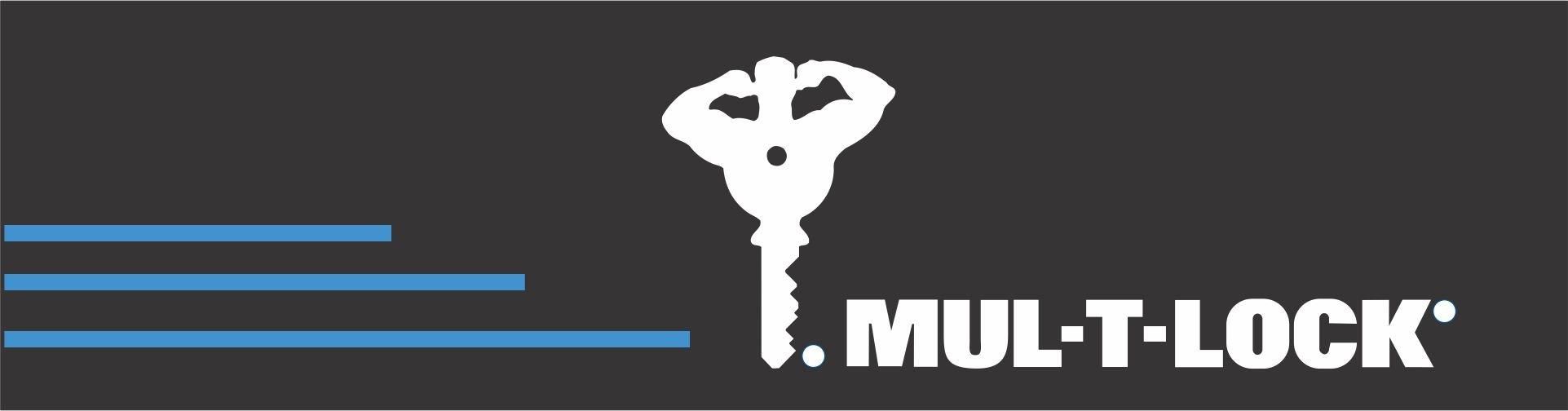 cerraduras de seguridad multilock
